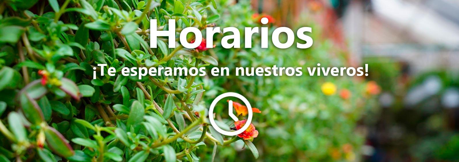 Horario Vivero Luis Moreno
