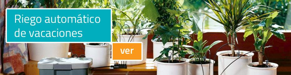 Consejos para tu jard n en oto o viveros luis moreno for Vivero tu jardin