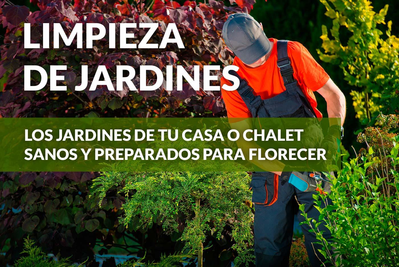 Limpieza de jardines viveros luis moreno for Mantenimiento de jardines