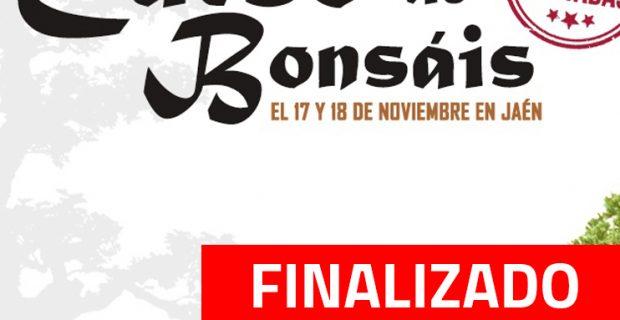 CURSO FINALIZADO 1