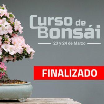 CURSO FINALIZADO 2