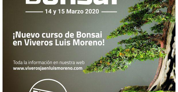 CURSO BONSAI 2020-03