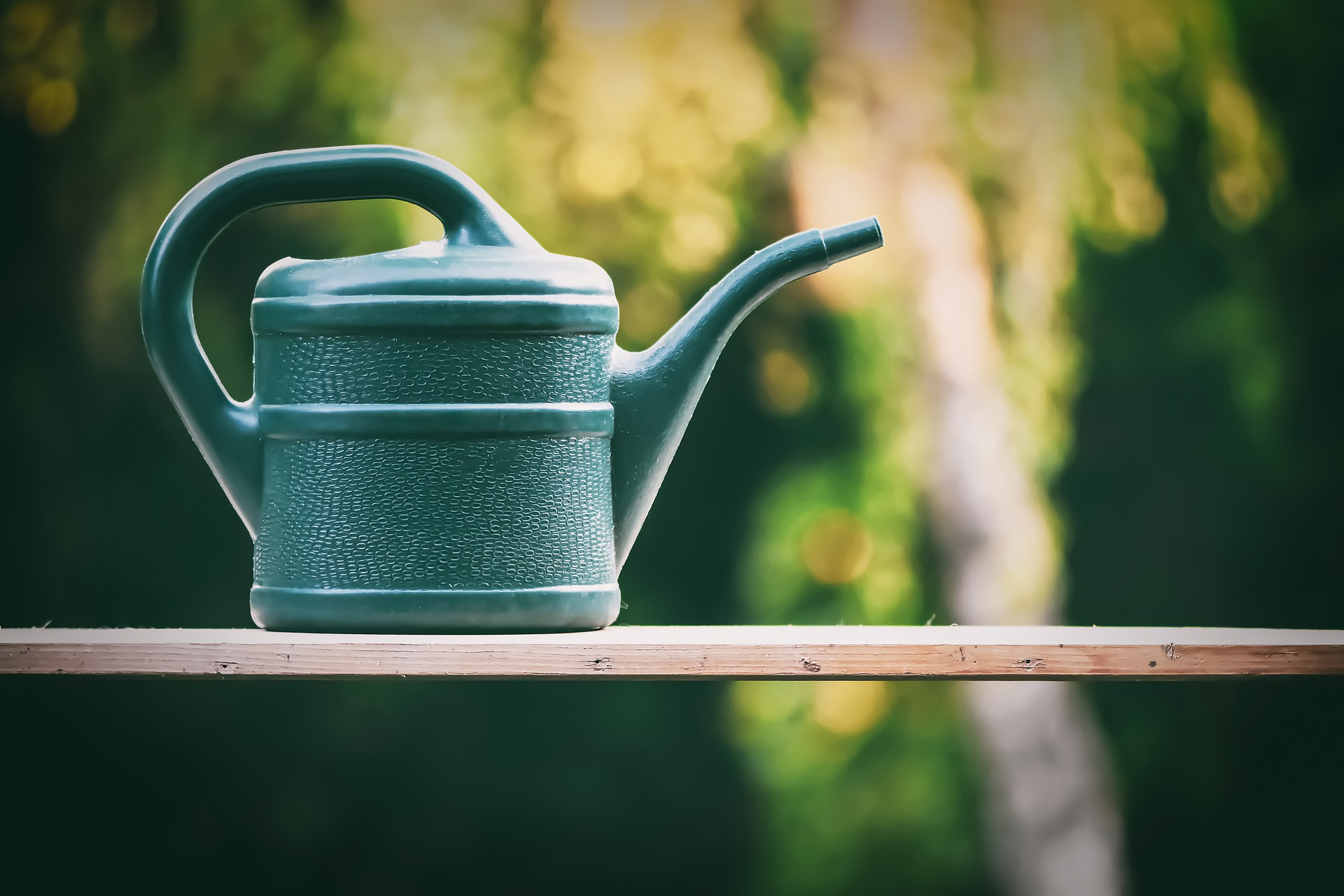 watering-can-5202988_1920